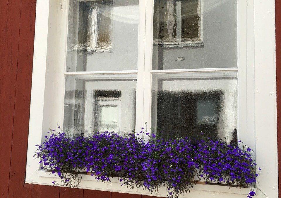 Prisvärda klarfönster av nordiskt virke